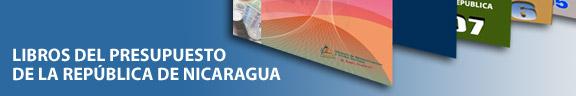 Banner Libros del Presupuesto